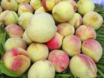 新鲜采摘桃子