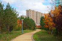 住宅楼小区秋季园林风光