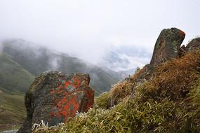 穿越大相岭的垭口红石和云雾
