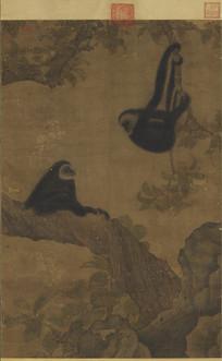 宋人  枇杷猿戏图