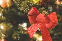 闪闪发亮装饰的圣诞树