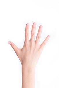 一只手的背面