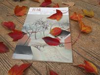 书本红枫叶