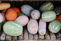 南瓜蔬果大丰收