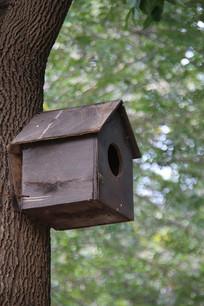 人造鸟笼小屋