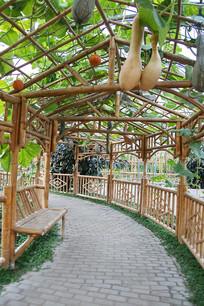 蔬菜果园凉棚