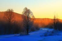 树林雪景朝阳