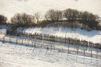 雪地羊圈一角