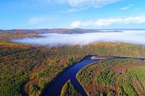 蓝色森林河晨雾(航拍)