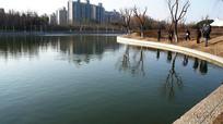 上海公园绿地湖水