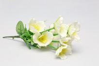 塑料干花花朵