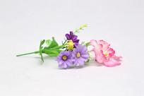 紫红色干花