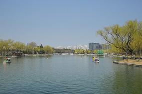 陶然亭公园水景