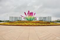 城市广场花坛盛开莲花景观