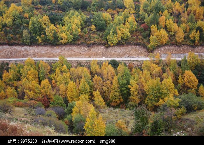 多彩山林秋色美景公路图片