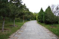 森林公园青石板路