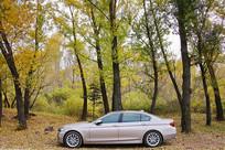 森林中的宝马小汽车