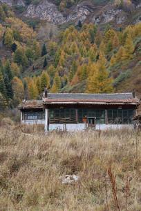 森林中的老屋
