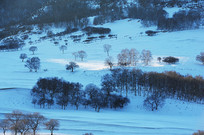 雪地一束光