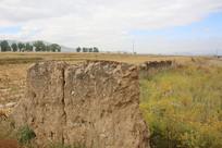 庄稼地里古城墙