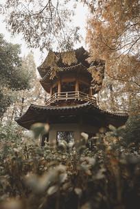 中式古风亭子