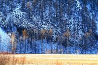 林海雪原冰雪景观