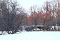 林海雪原木桥景观