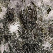 天然图形黑色水墨背景