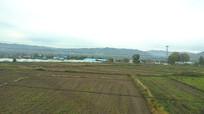 草地风景图