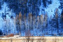 林海雪原山林风光