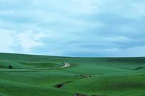 草原羊肠小道