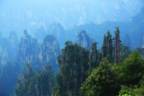 张家界森林公园群峰景观