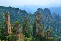 张家界砂岩峰林地质景观
