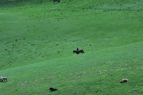 草原山坡骑马