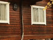 窗前一支银杏