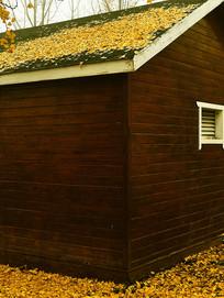 黄叶包裹的小木屋
