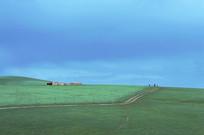 蓝天下的绿色草原