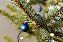 圣诞节铃铛