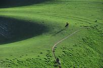 北疆草原风光
