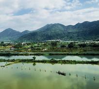 鱼米之乡山水风景图