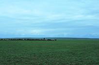 湛蓝天空和草原