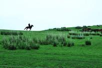 骑马过山岗