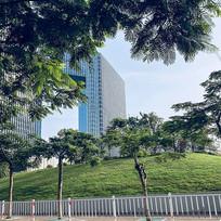 城市高楼和绿化