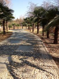 公园里的鹅卵石步道