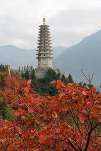 巫峡镇水塔前的巫山红叶
