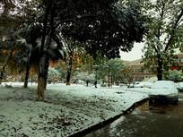 雪后的小路