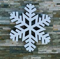 雪花墙体景观
