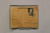 1939年犹太女孩护照