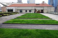 楼顶花园草坪