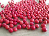 小红果静物